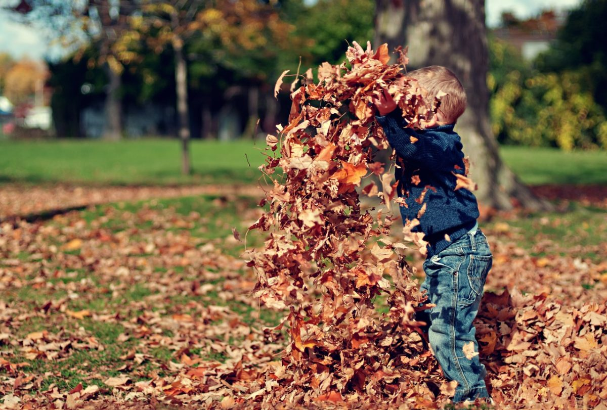 My top 5 tips for selling your house in autumn